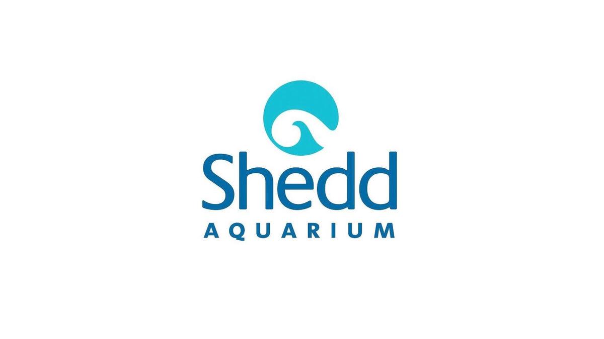 Shedd Aquarium | Chicago Learning Exchange